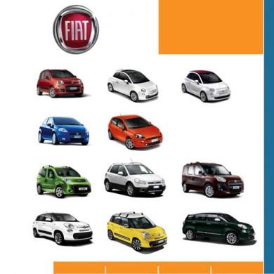 Bochane Fiat auto's powerpointpresentatie - De Groen Design