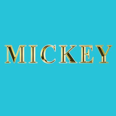 Huisstijl Mickey blue - De Groen Design